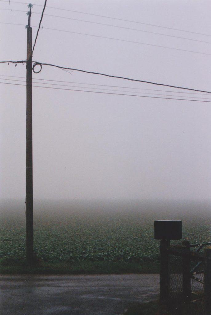 Photographie argentique, champs de brume, décembre 2016, Normandie, France.