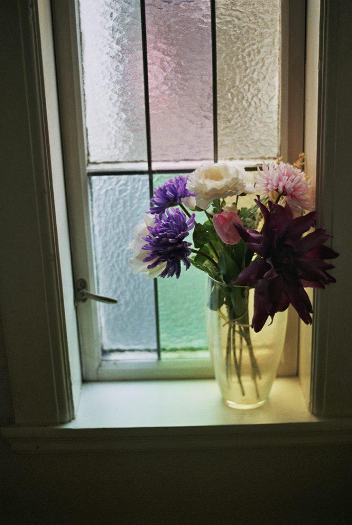 Photographie argentique, fleurs à la fenêtre, février 2018, Stavanger, Norvège.