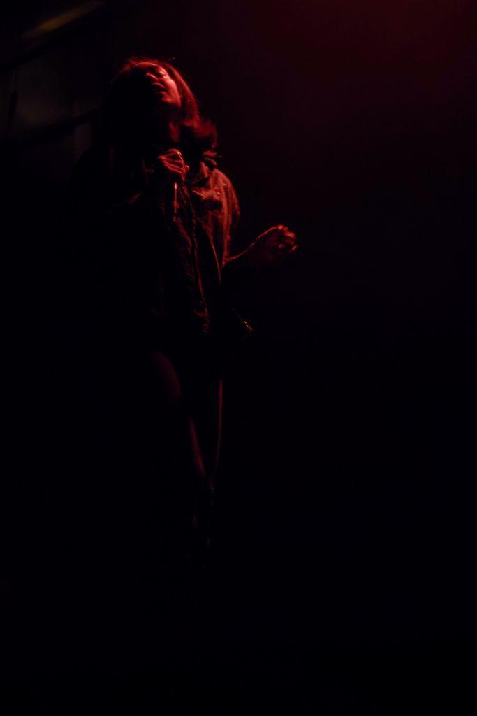 Photographie numérique, portrait de la chanteuse-rappeuse de Bumble Bzz, concert au flow lille, mars 2019, Lille, France.