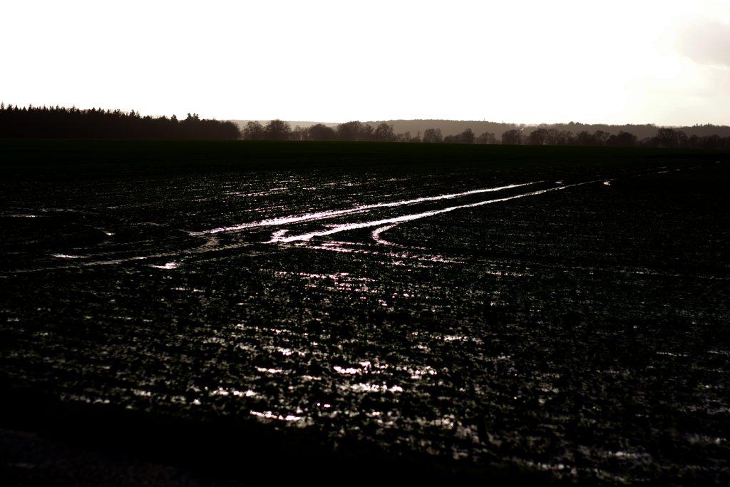 Photographie numérique, rythme des champs, décembre 2019, Normandie, France.